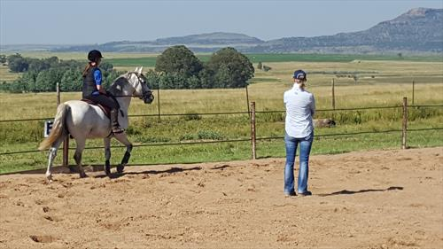 Riding Trainer/Mentor/Stud Manager - South Africa